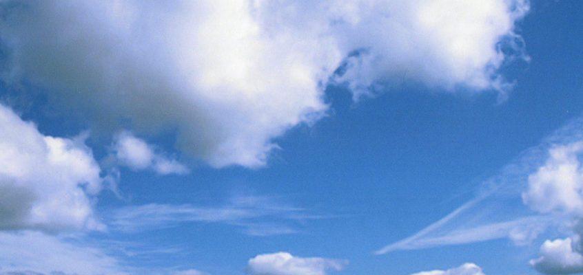 【内藤律子】サラブレッド写真展 2021 私の写真歴 part3 & … 2021/7/29(木)~8/31(火) 浦河町立図書館