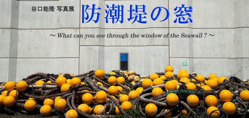 【谷口能隆】個展『防潮堤の窓 ~What can you see through the windows of the Seawall?~』2021/10/14(木)~20(水)